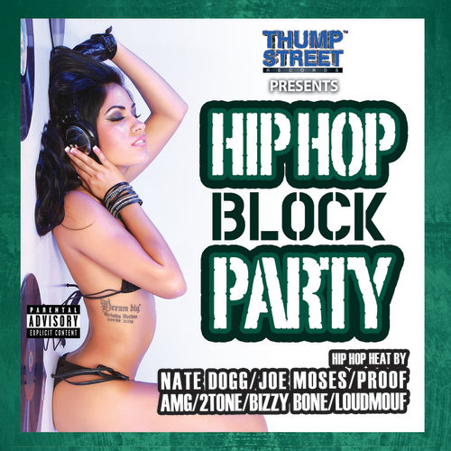 Hip Hop Block Party by Various Artists