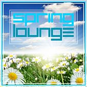Spring Lounge by Various Artists