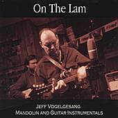 On the Lam: Mandolin and Guitar Instrumentals by Jeff Vogelgesang