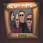 Picture Perfect by Various Artists
