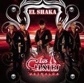 El Shaka by Los Cuates De Sinaloa