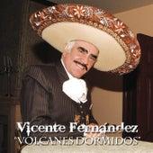 Volcanes Dormidos by Vicente Fernández