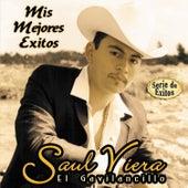 Mis Mejores Exitos - Serie de Exitos by Saul Viera