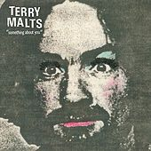 Something About You by Terry Malts