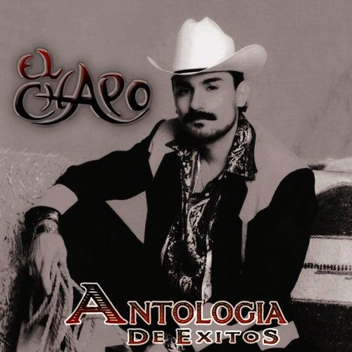 Antologia de Exitos by El Chapo De Sinaloa