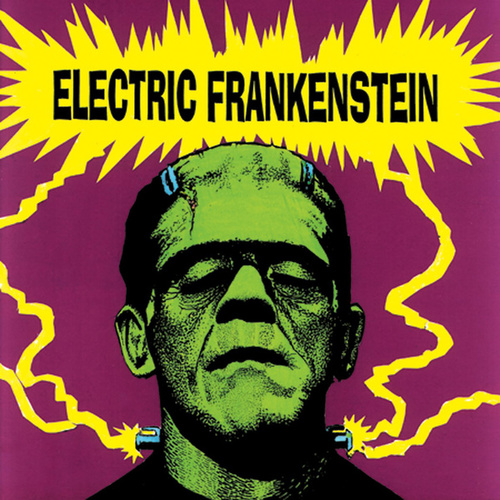 I'm Not Your (Nothing) by Electric Frankenstein