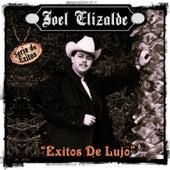 Simplemente Exitos - Serie  de Exitos, Vol. 2 by Joel Elizalde