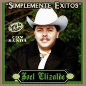 Simplemente Exitos - Serie de Exitos by Joel Elizalde