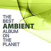 The Best Ambient Album On The Planet by Various Artists