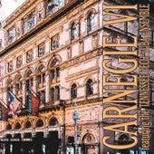 Carnegie VI by R. Winston Morris
