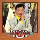 Hat Cho Mai Sau by Duy Khanh
