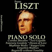Liszt, Vol. 6 : Piano Solo (AwardWinners) by Various Artists