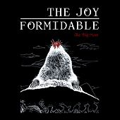 The Big More von The Joy Formidable
