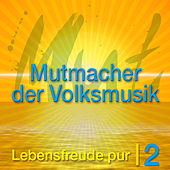 Die Mutmacher der Volksmusik Vol. 2 by Various Artists