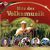 Top45 - Hits der Volksmusik by Various Artists