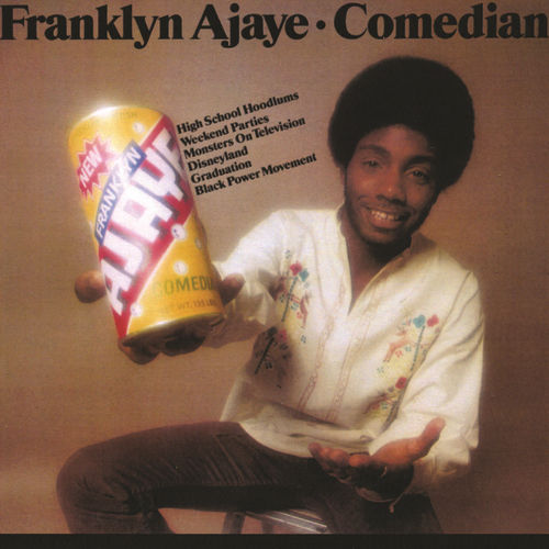 Comedian by Franklyn Ajaye