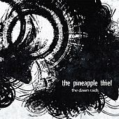 The Dawn Raids 2 by The Pineapple Thief
