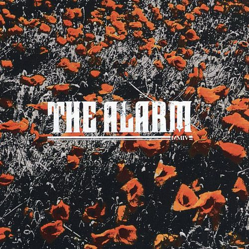 In The Poppy Fields by The Alarm