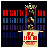 The Magic Of The Mandolin by Dave Apollon
