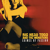 Crimes Of Passion by Big Head Todd And The Monsters