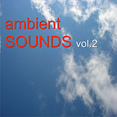 Ambient Sounds Vol.2 by Various Artists