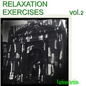 Relaxation Exercises Vol.2 by Various Artists