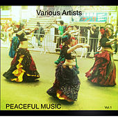 Peaceful Music Vol.1 by Various Artists