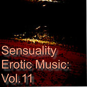 Sensuality Erotic Music: Vol.11 by Various Artists
