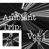 Ambient Trip: Vol.1 by Various Artists