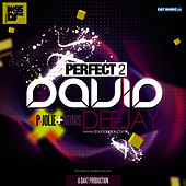 Perfect 2 by David DeeJay