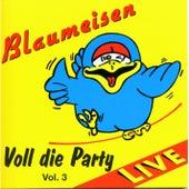 Voll die Party Vol. 3 by Blaumeisen