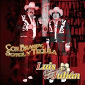 Con Brandy, Sotol y Tequila by Luis Y Julian
