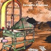 Serenata italiana, vol. 20 by Various Artists