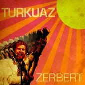 Zerbert by Turkuaz