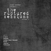 Ruptured Sessions Vol. 4 by Various Artists