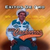 Exitos De Oro by Los Cachorros de Juan Villarreal