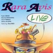 Live by RaRa Avis