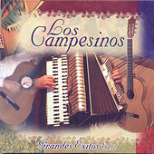 Los Campesinos: Grandes Exitos, Vol. 2 by Los Campesinos!
