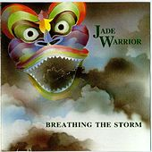 Breathing The Storm by Jade Warrior