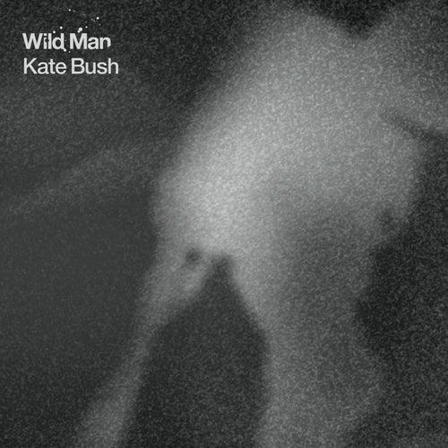 Wild Man by Kate Bush