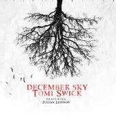 December Sky by Tomi Swick