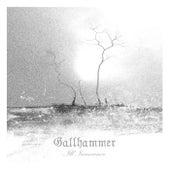 Ill Innocence by Gallhammer