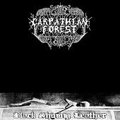 Black Shining Leather by Carpathian Forest