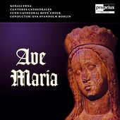 Ave Maria by Eva Svanholm Bohlin