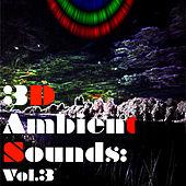 3D Ambient Sounds: Vol.3 by Various Artists