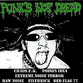 Punk's Not Dread by Various Artists