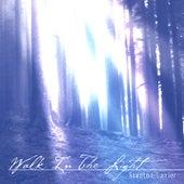Walk In the Light by Stanton Lanier