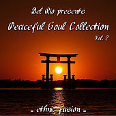 Peaceful Soul Collection, Vol. 2  (Ethnic Fusion) by Del Rio