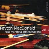Solo Marimba Improvisations Vol. 1 by Payton MacDonald