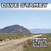Twelve Mile Road by Dave Stamey